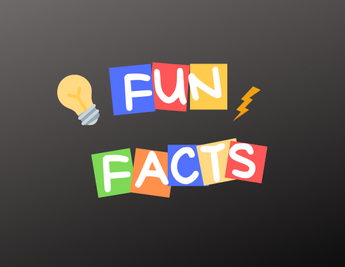 Fun Facts about ChicChug's Indoor sessions at our cozy home-run studio based