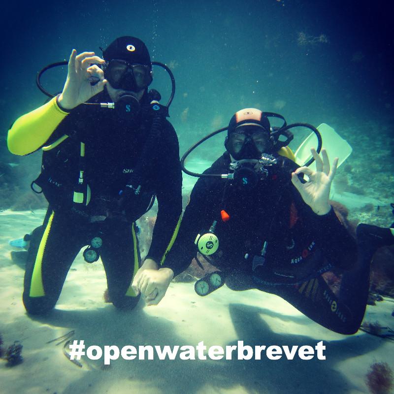 openwaterbrevet