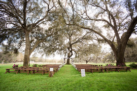 Ceremony Under the Oaks
