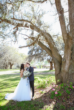 Bride and Groom under the Trees