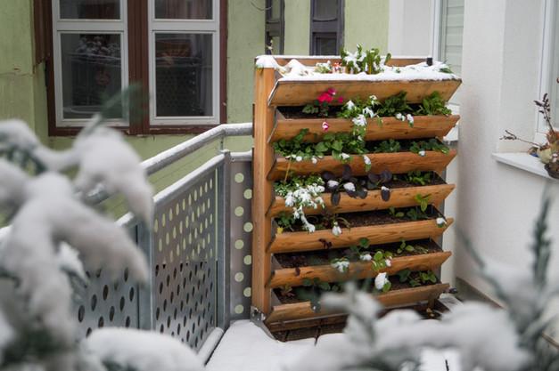 Balkon Winter Vertikalbeet