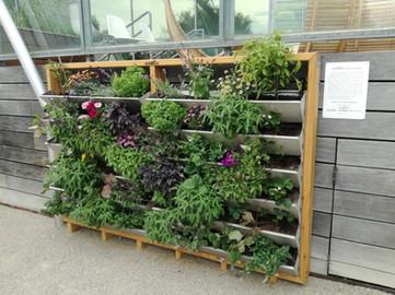 Wandgarten mit Vertikalbeet