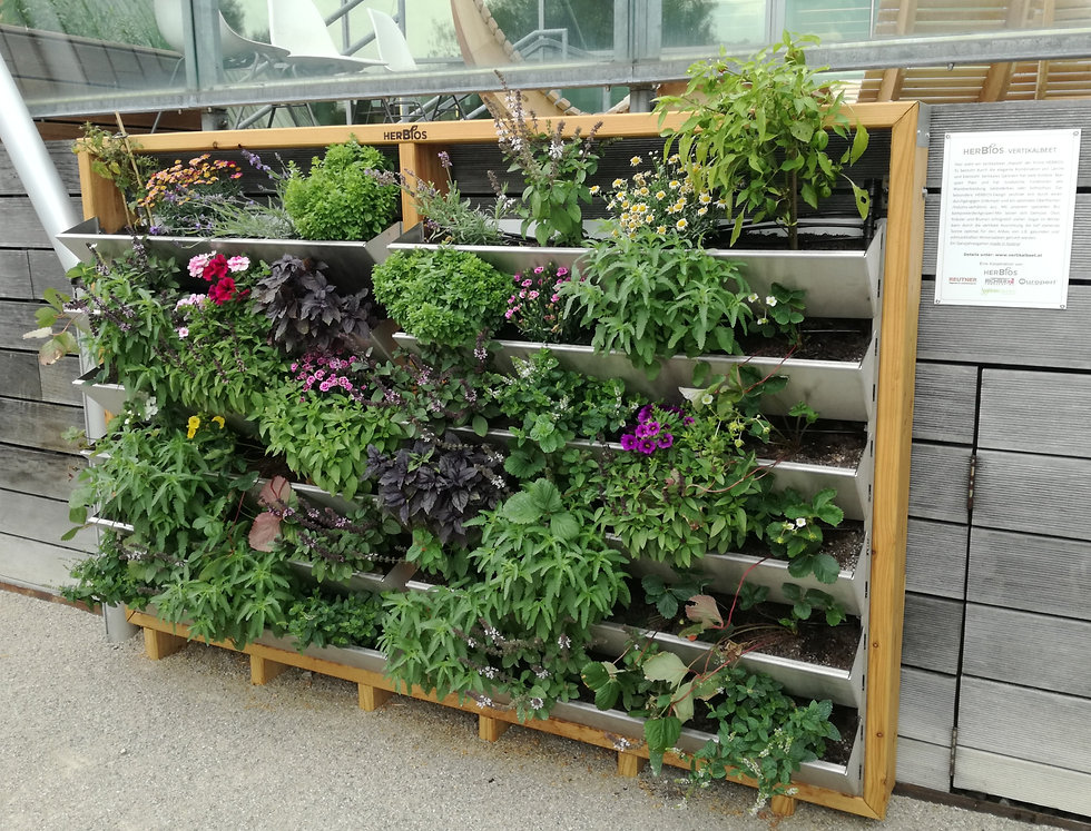 Wandgarten, urban gardening, vertikales Hochbeet
