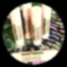 Untitled%20design%20(17)_edited.png