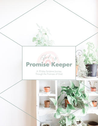 Promise Keeper Reading Plan