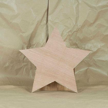 Adorno pared STAR