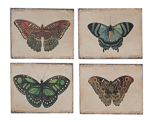 Cuadro mariposas chico