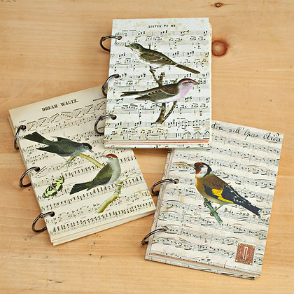 Cuaderno birds and music