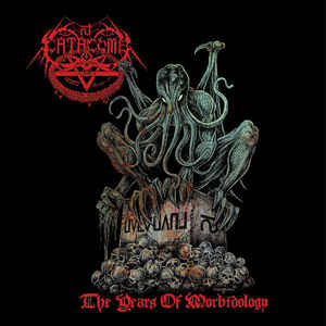 Catacomb – The Years Of Morbidology (2010 Compiliation)