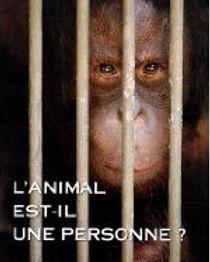 L'animal est-il une personne