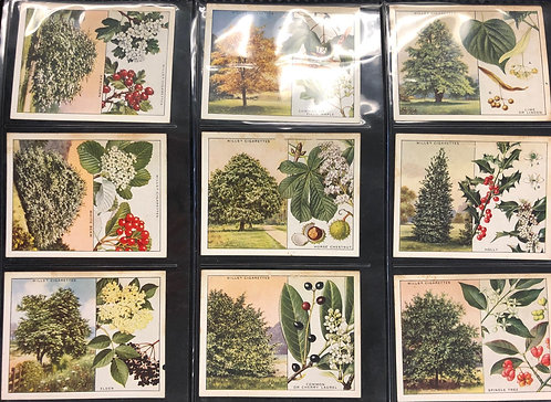 Vintage tobacco trading cards Wills /Imperial Tobacco Co. TREES series, 22 of 50