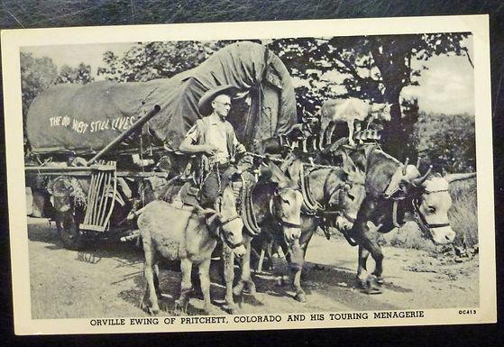 Orville Ewing Pritchett CO w/ Touring Menagerie Real Photo Postcard