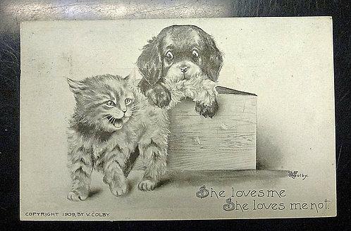 """1909 Puppy-Kitten Postcard V. Colby """"She Loves Me She Loves Me Not"""""""