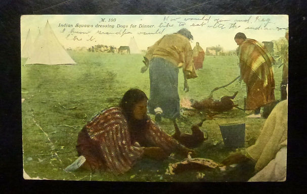 """Vintage postcard 1911 """"Indian Squaws Dressing Dogs for Dinner"""" VALIER, Montana"""