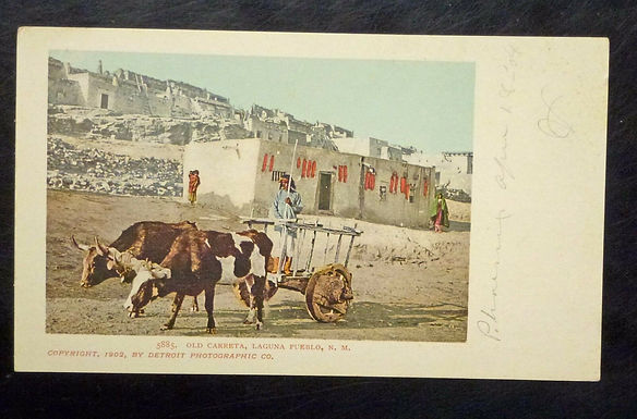 Laguna Pueblo, NM 1902 Bulls pulling Cart Postcard Old Carreta