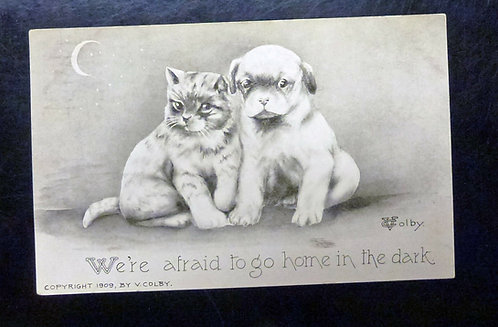 Cute 1909 postcard of a kitten and puppy