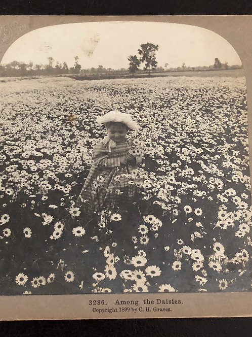 "Antique 1900's Stereoview ""Among the Daisies"" BABY IN A FIELD OF DAISIES"