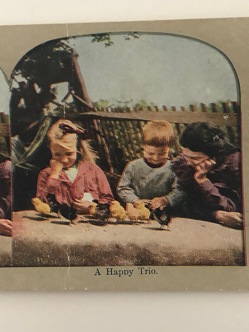 "Antique 1900's Stereoview ""A Happy Trio"" Children playing with BABY CHICKS"