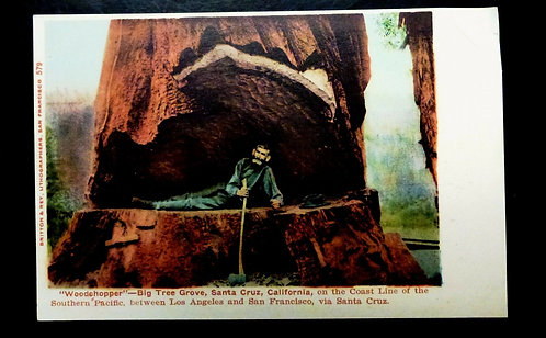 Antique postcard WOODCHOPPER inside Sequoia Redwood Tree Santa Cruz, CA