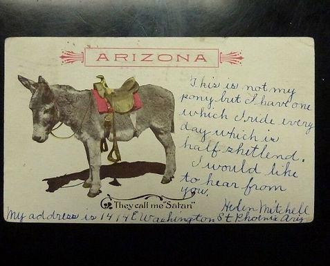 "1907 ARIZONA Territory , Donkey ""They Call Me Satan""  Postcard"
