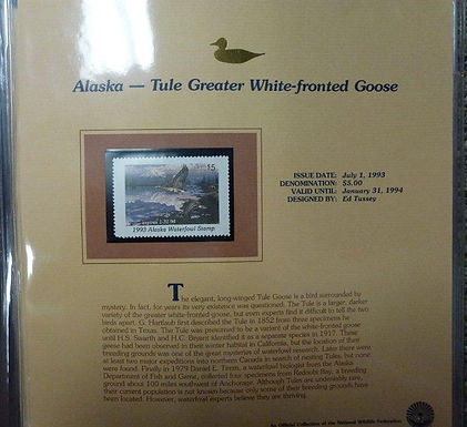 State Ducks Stamps Lot 1497- 1993 W/COA