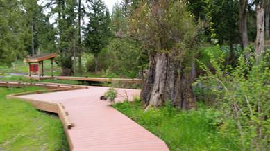 Bonhoeffer Botanical Gardens