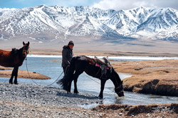 mongoliapogoram155