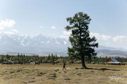 mongoliapogoram158