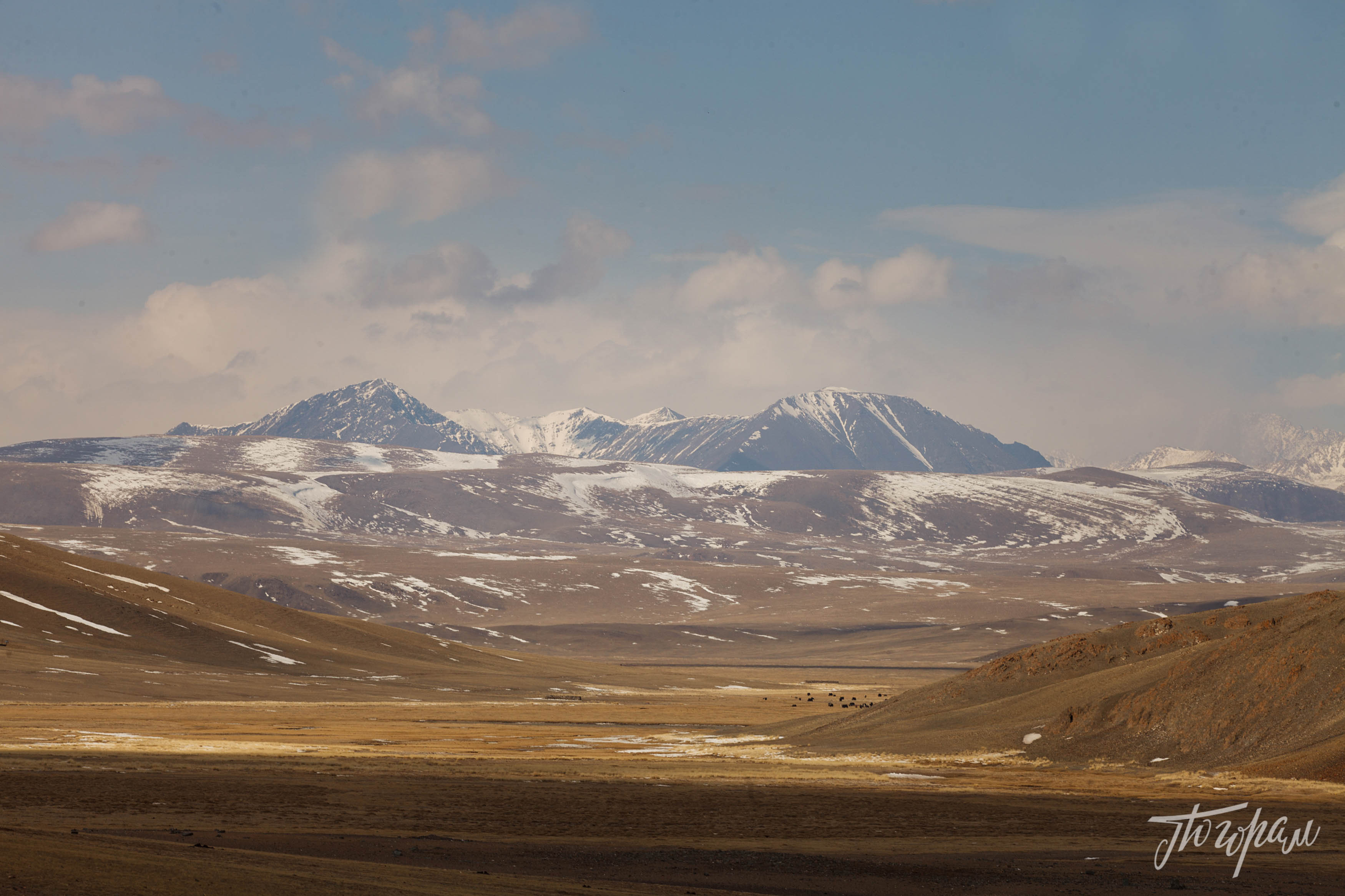 mongoliapogoram11