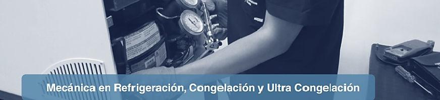 Mecanica Refrigeracion, Congelacion.jpg