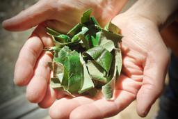 手作りびわの葉茶