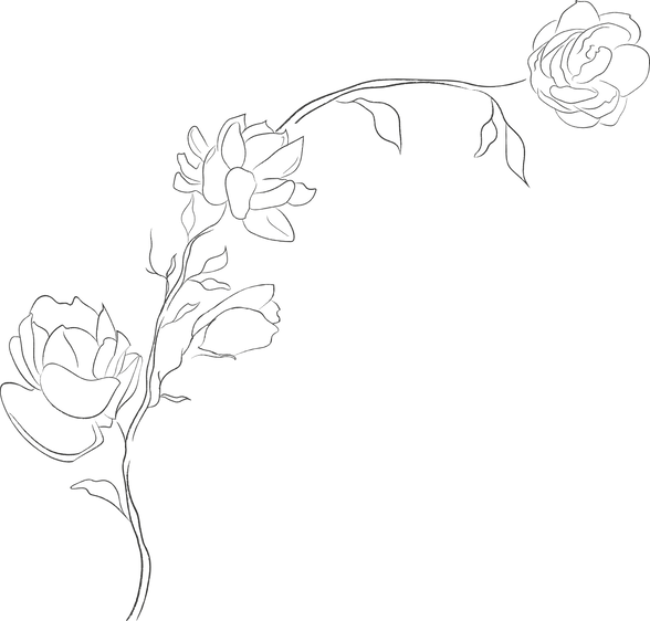 jasmine-flowers-1.png
