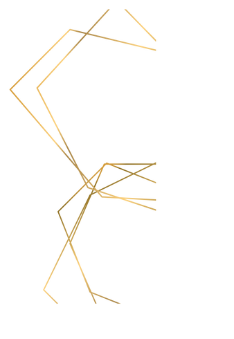 lines (1).png