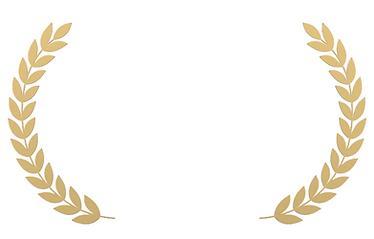 לוגו זהב לבן נקי.PNG