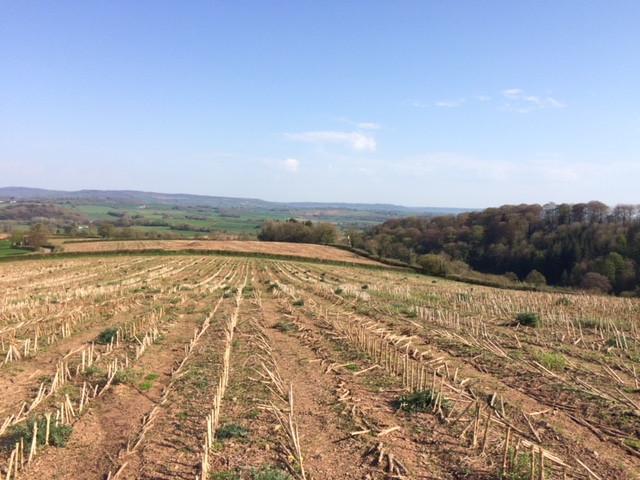 Top of Fenton Farm
