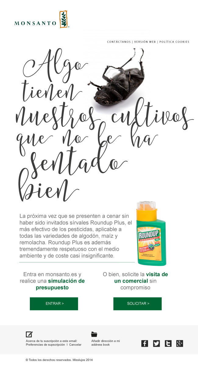 Publicidad Creativo Freelance Madrid Raul Sauz Diseño email marketing