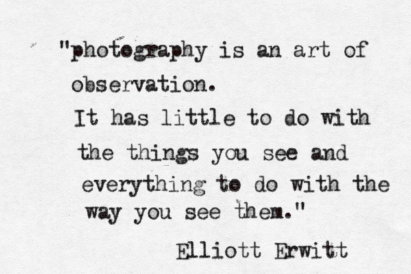 THE ART OF MY OBSERVATIONS