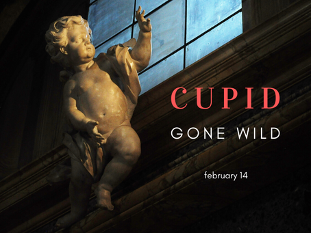 A Cupid Gone Wild Valentines Challenge