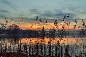 Landschaften & Natur.jpg