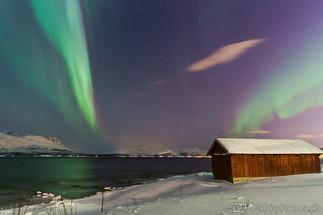 Nordlicht über Fjord - Tromsø, Norwegen