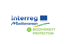 BIODIVERSITY PROTECTION.png