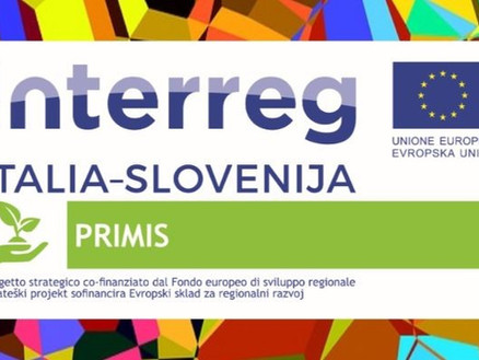 Multicultural journey between Italy and Slovenia through the prism of minorities