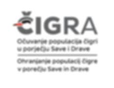 Čigra_Logo_-_Small_-_Cro_+_Slo_1_-_White