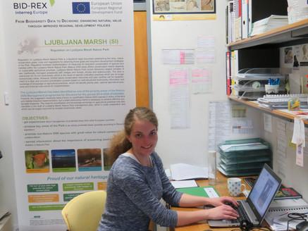 Digitising species data in Slovenia
