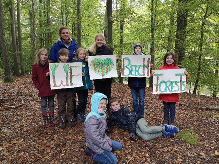 The importance of beech forests