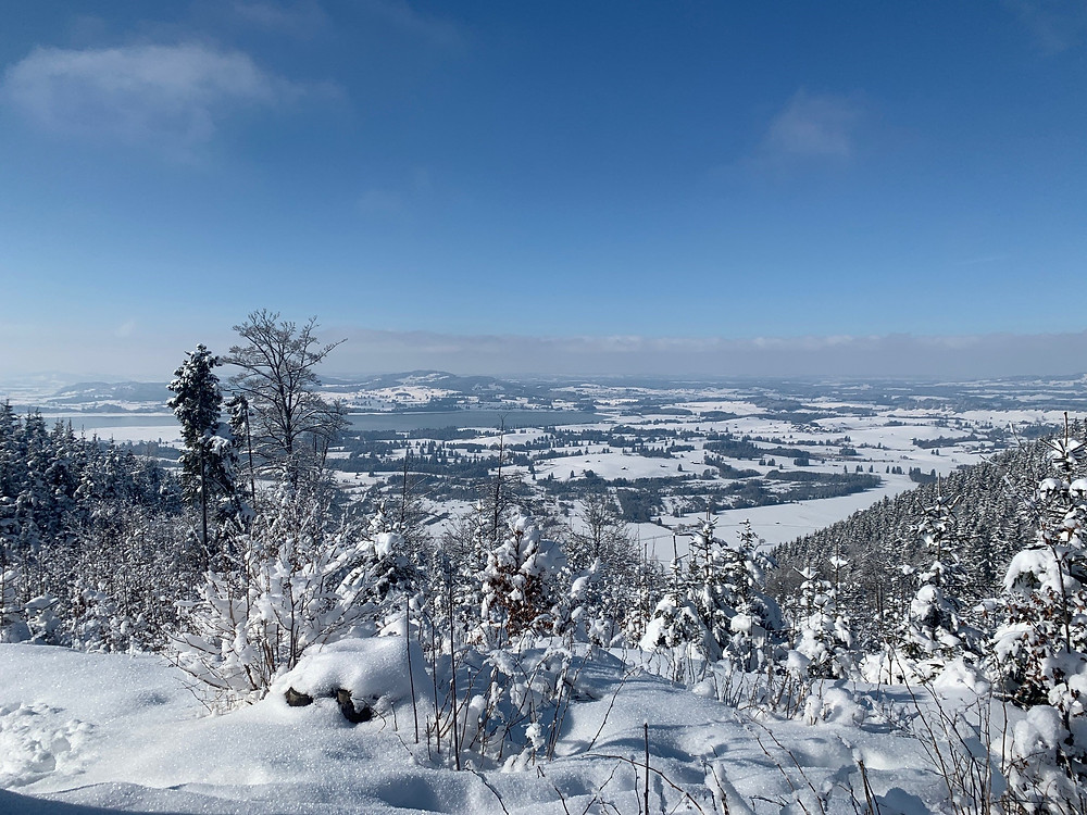 (Mountain view to the lake): Hiking in the snow is great fun, especially when it's rewarded with impressive views. Here, you can see the Forgensee close to the Neuschwanstein castle.