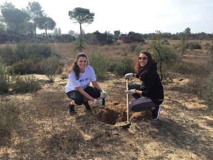 1,000 trees to save Doñana National Park