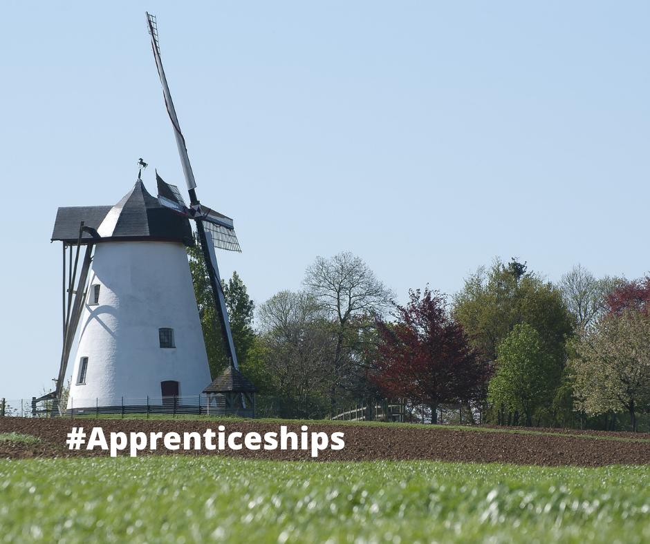 Making cross-border internship worthy (EGTC Linieland van Waas en Hulst (in cooperation with Euregion Scheldemond)
