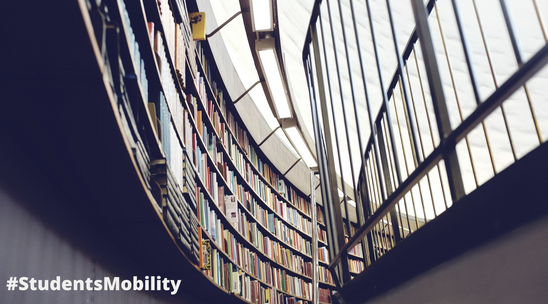 Elimination of barriers and 360º evaluation of the mobility of students from vulnerable groups in the higher education ecosystem of the GNP Euroregion (Centro de Estudos Eurorrexinais Galicia-Norte de Portugal)