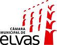 camara_municipal_elvas.jpg